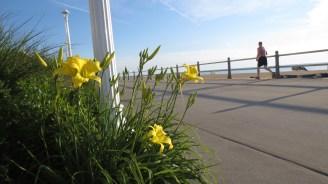 Le boardwalk fleuri de 5 km comprend maintenant un piste cyclable. D'une propreté impeccable, la plage est deux fois plus large qu'il y a 20 ans. (Photo: Benoit Legault)