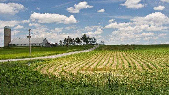 agriculture-printemps
