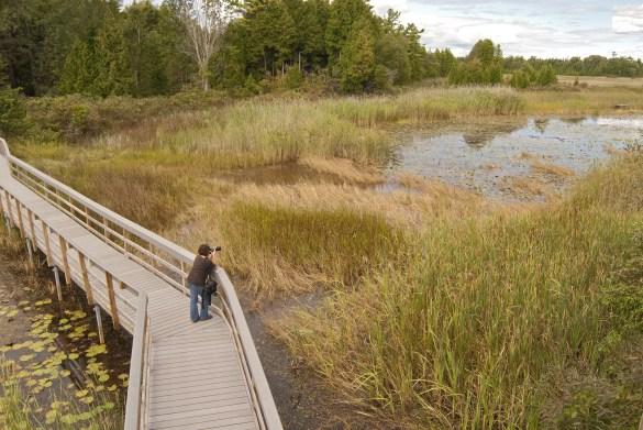 La promenade de bois du parc provincial Presqu'ile, à la hauteur de Brighton accessible de la 401. (Photo: Parcs Ontario)