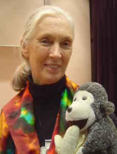 Jane Goodall (Photo: Jeekc, CC BY 2.5, https://commons.wikimedia.org)