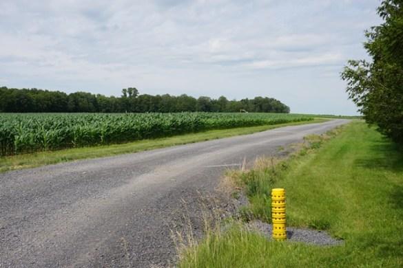 Des chemins qui réduisent le compactage des sols.