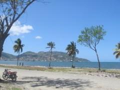 plage et palmiers