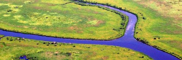 Parc national Wood Buffalo