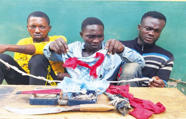 1[Photo] 3 voleurs de slips de femmes arrêtés par la police