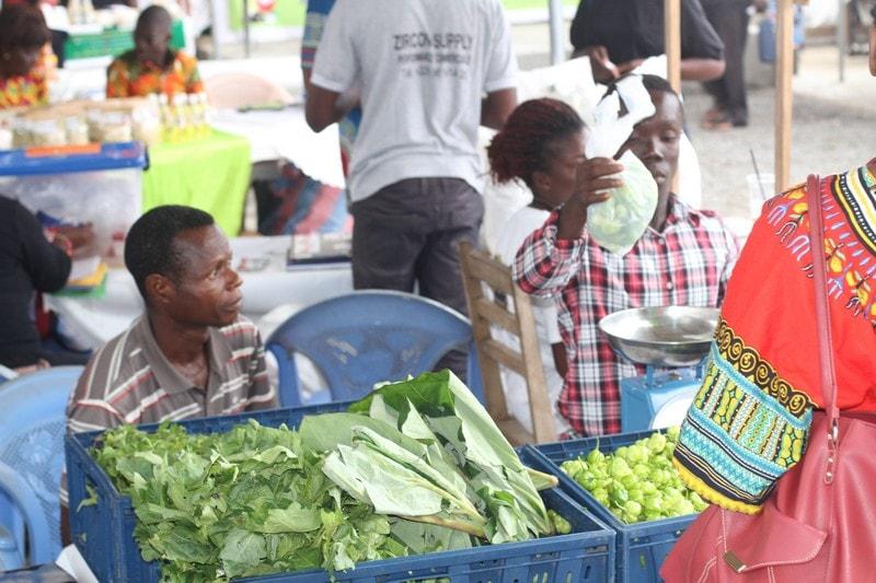 Togo-Espace Viva le marché des paysans officiellement ouvert ce samedi (8)-min