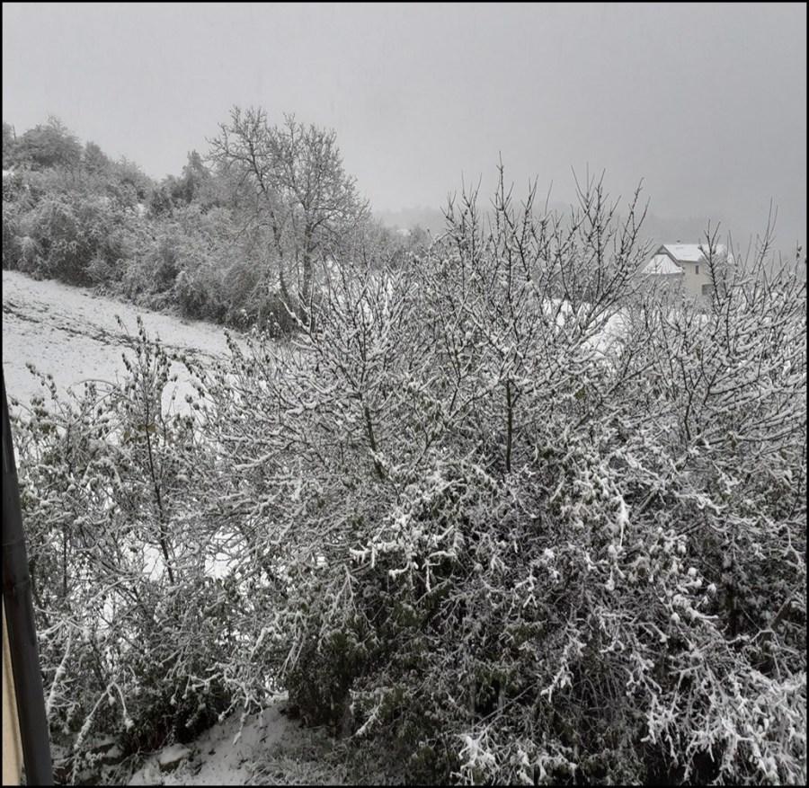 1ere neige hiver