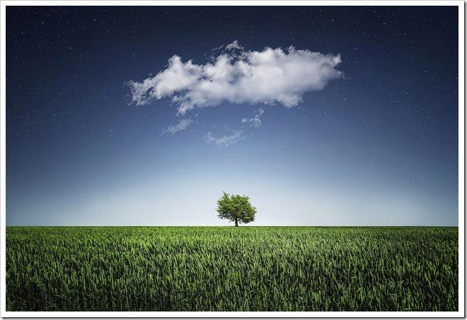 nuage arbre egregore paix
