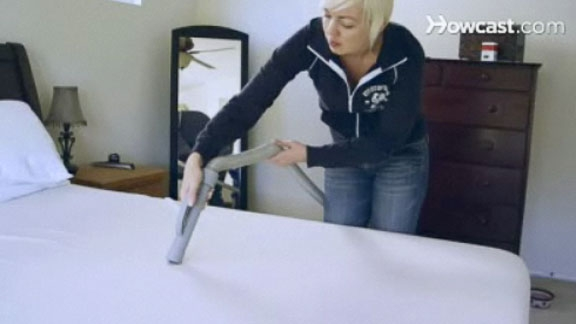 How to Prevent Bed Bugs From Spreading @ Yahoo! Video