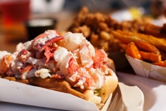 Lobster roll in Maine