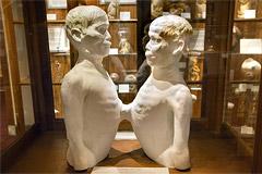 Mütter Museum (Philadelphia, Pennsylvania)