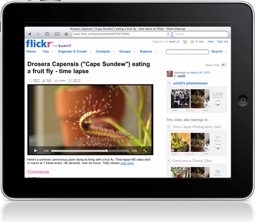 Viewing Flickr videos on the iPad