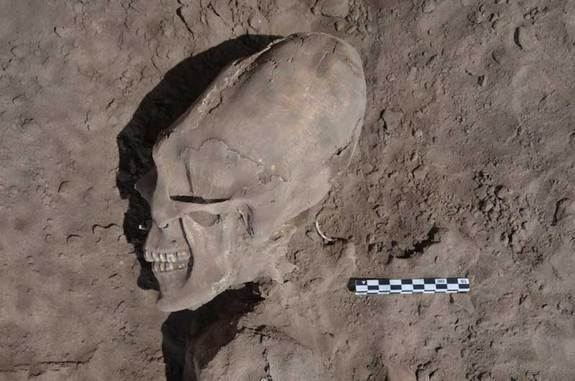 'Alien-Like' Skulls Excavated in Mexico - Yahoo! News