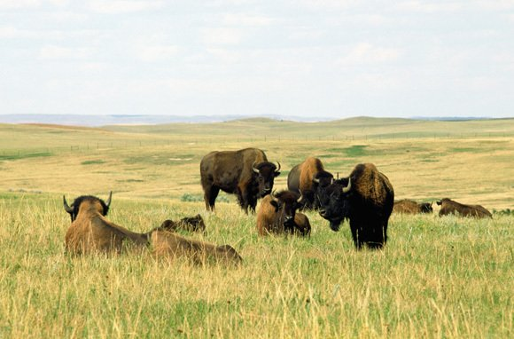Best hidden place in the U.S.: North Dakota. (Photo: Thinkstock/Photodisc)