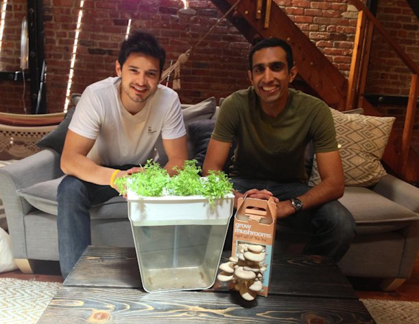 This undated publicity photo provided by Back to the Roots shows the founders Alejandro Velez, left, and Nikhil Arora with the company's Mushroom Kit and AquaFarm. (AP Photo/Back to the Roots)