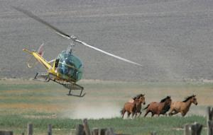FILE - In this July 13, 2009 file photo, a helicopter …