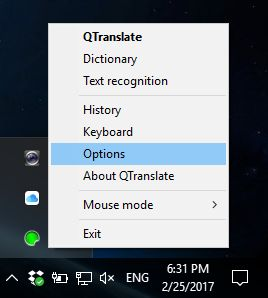 Options For QTranslate