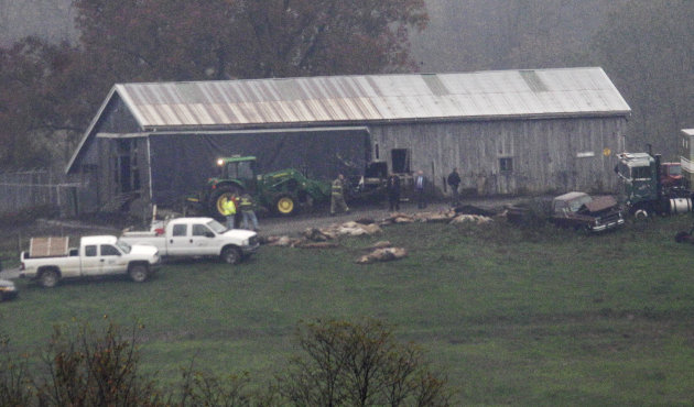 Investigators walk around a barn as carcasses lay on the ground at The Muskingum County Animal Farm Wednesday, Oct. 19, 2011, in Zanesville, Ohio. Police with assault rifles stalked a mountain lion, g