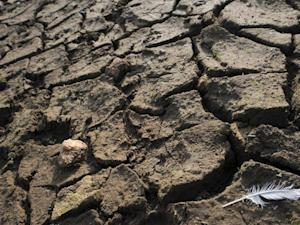 File photo taken in November 2011 shows dry soil at the Drennec lake in western France