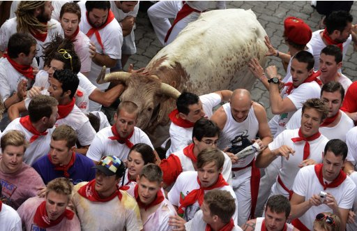 Runners attempt to evade a steer at the entrance to the bullring during the first running of the bulls of the San Fermin festival in Pamplona
