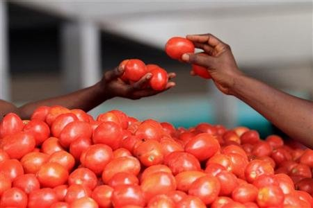 A woman buys tomatoes at Gouro market in Abidjan January 10, 2011. REUTERS/ Thierry Gouegnon