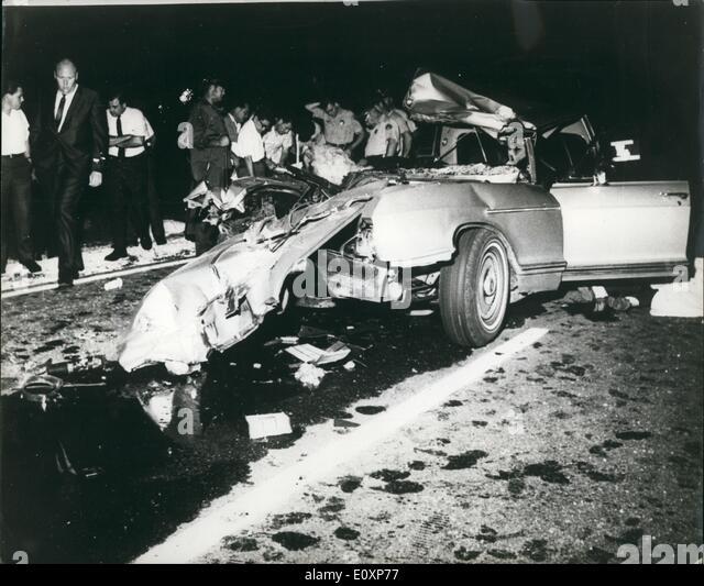 Jayne Mansfield Crash Dog