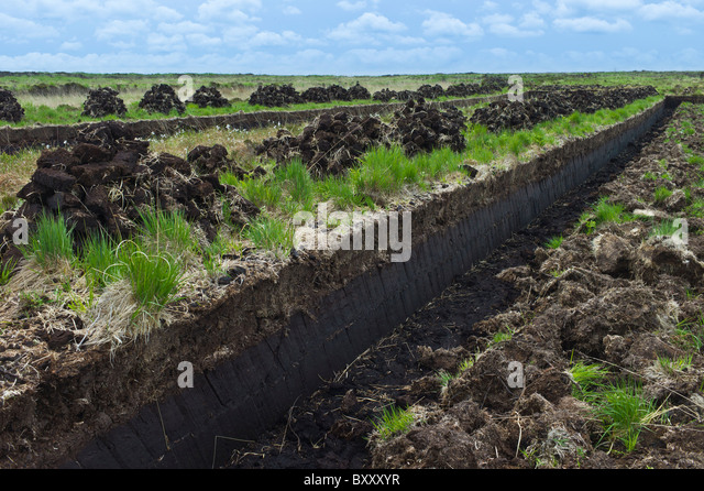 https://i2.wp.com/l7.alamy.com/zooms/92dadf99c14747dba161569fa76ecd58/turf-bog-shows-cutting-and-stacks-of-peat-footings-at-mountrivers-bxxxyr.jpg
