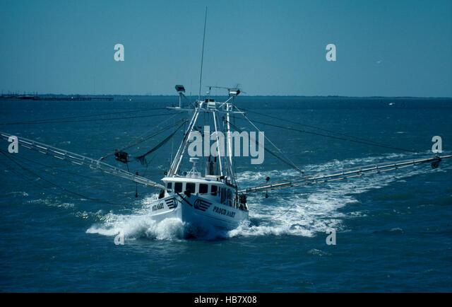Shrimp Boats Tarpon Springs