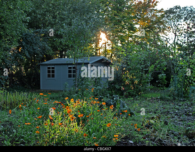 Garden Shed Flowers Stock Photos Amp Garden Shed Flowers