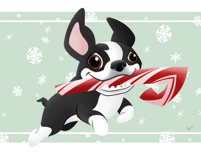 12 Holiday Dangers For Your Boston Terrier