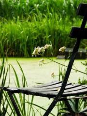 3 habitudes indispensables pour être zen en classe