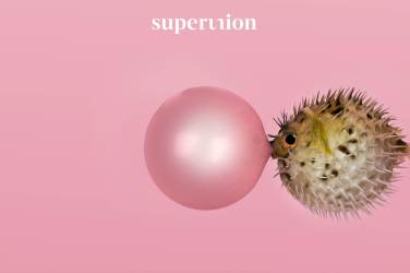 WPP-Superunion-la communication_fr