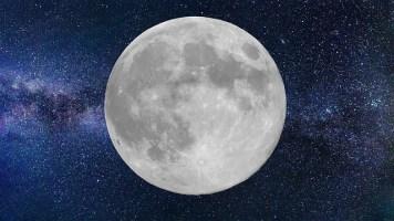 Pourquoi jardiner avec la Lune? L'influence de l'activité lunaire sur le jardin