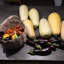 vegetables from the garden
