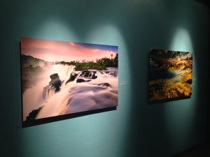 Viewing Life at Annenberg Space for Photography