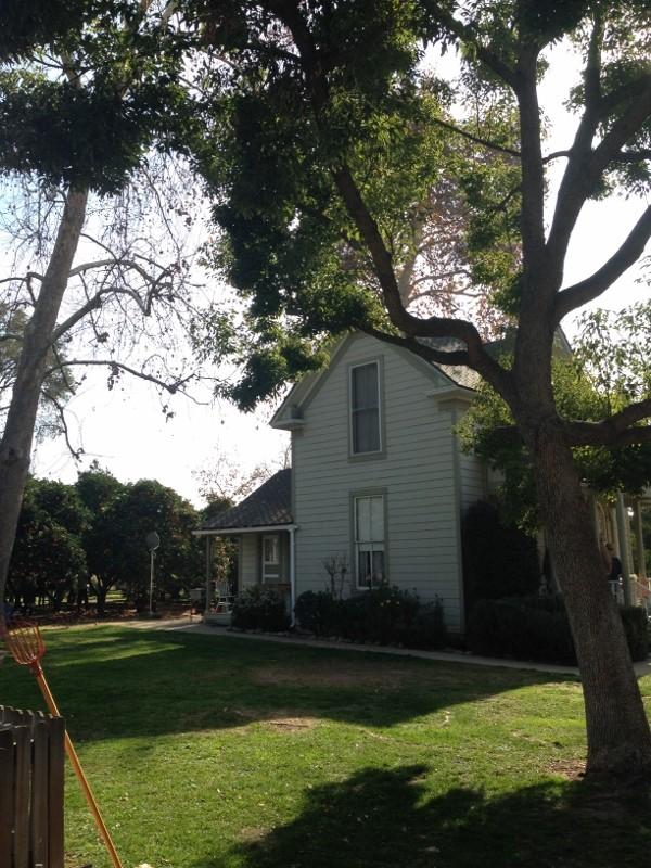 the weber house