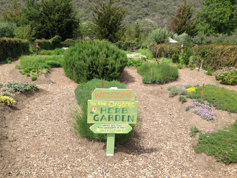 Stopping at Earthbound Farm Farm Stand - LA Explorer