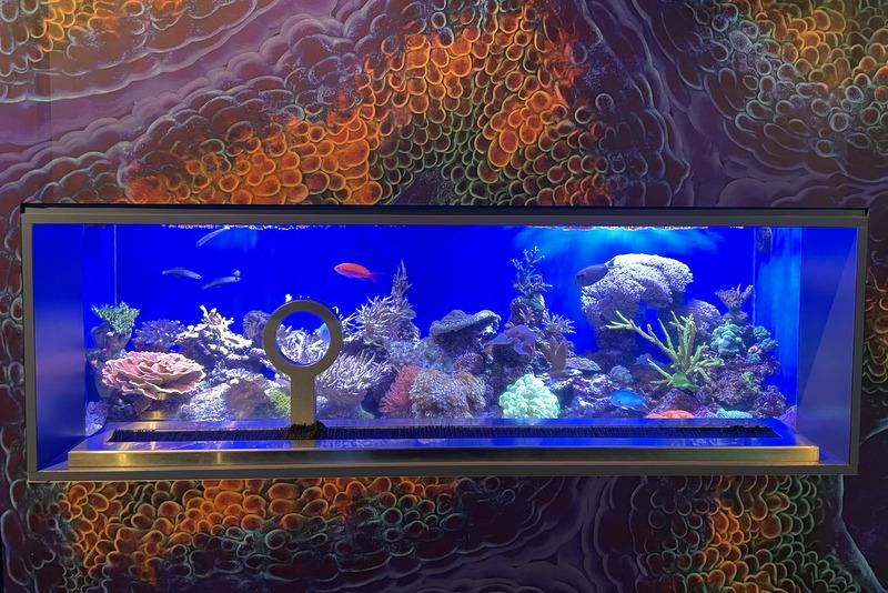 Aquarium of the Pacific Coral Reefs