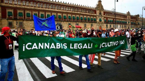 marcha-mariguana-cannabis