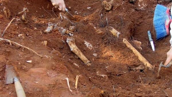 Foto de tumba hallada en Canadá anteriormente