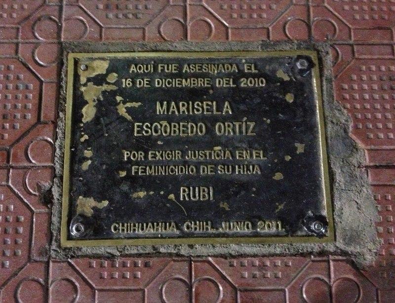 activistas que han sido asesinados