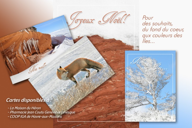 cartes de souhaits assorties noël