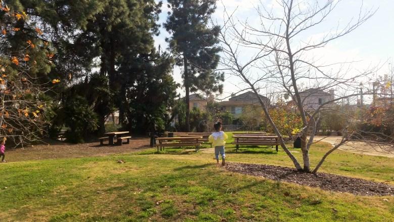 Laguna San Gabriel Park Benches