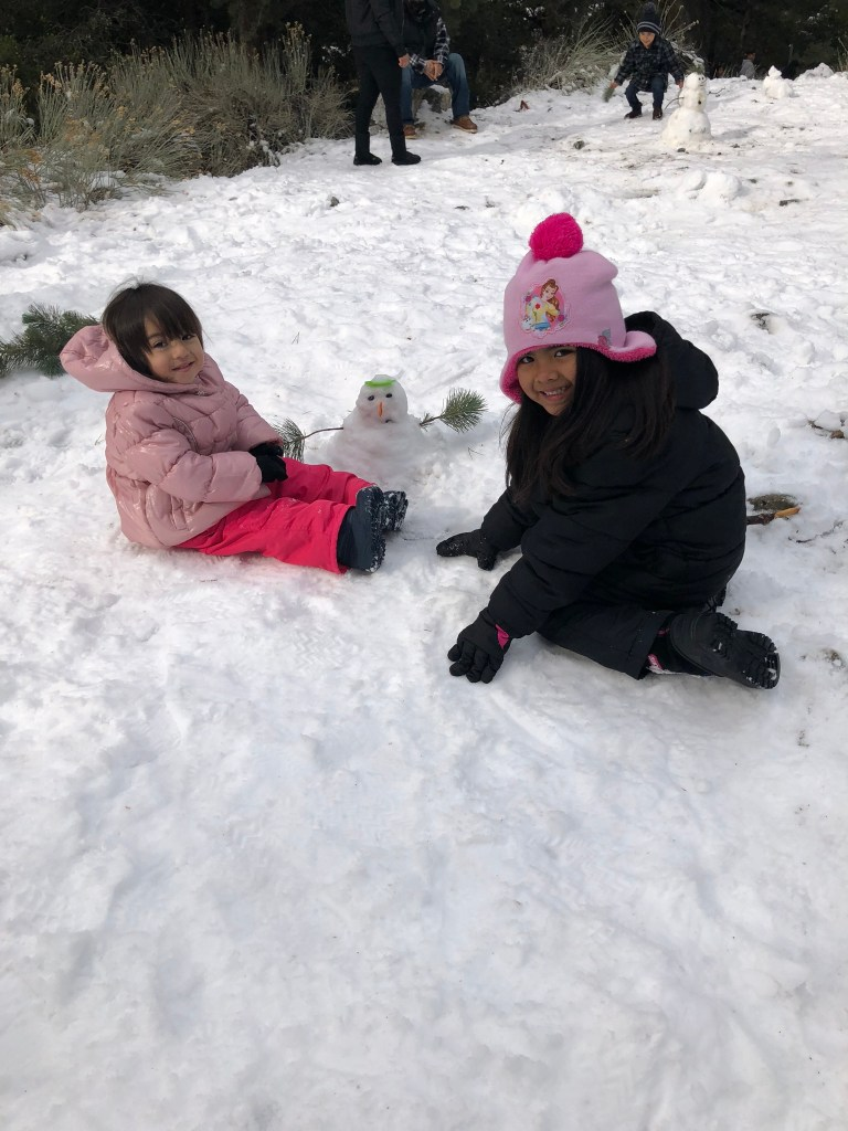 Little Cousins in the snow