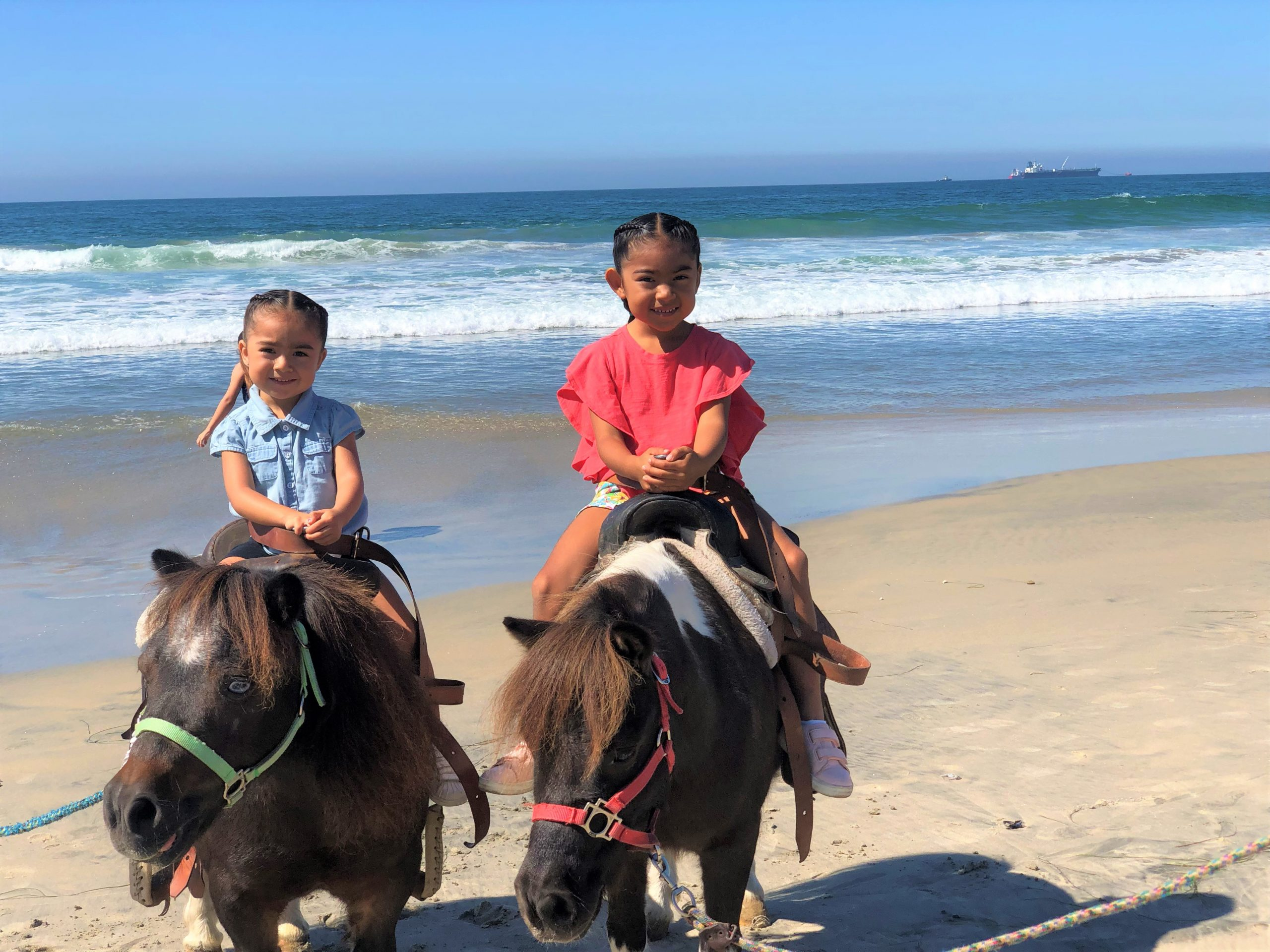 ponies in rosarito beach mexico