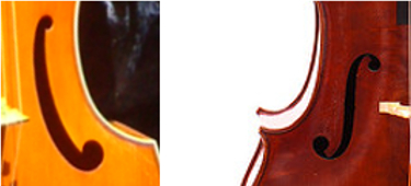 Difference ouie violoncelle et viole de gambe