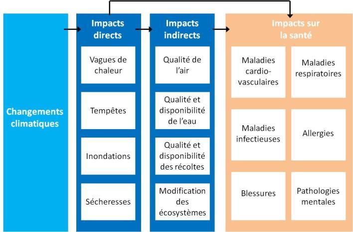 impacts changements climatiques