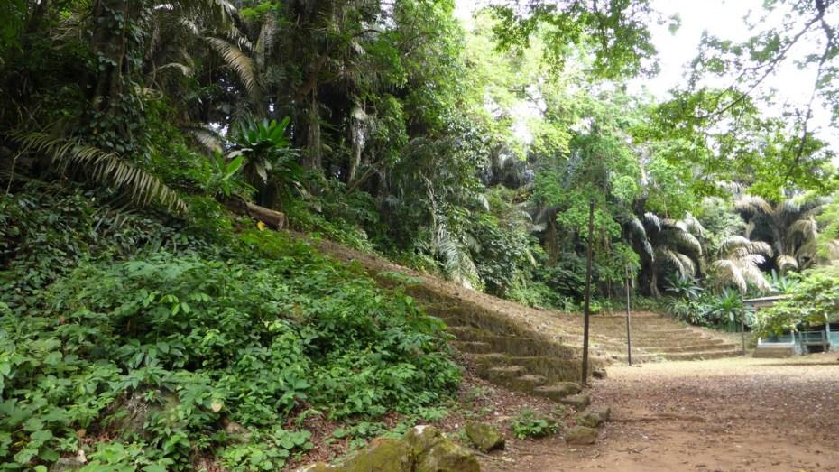 Limbe Botanic Garden