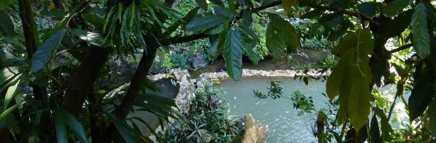 sulphur-spa-tias-Dominica