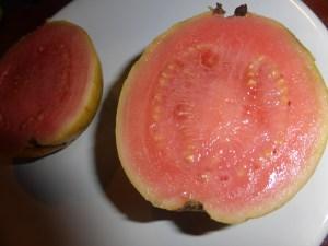 goyave-fruit-coupe