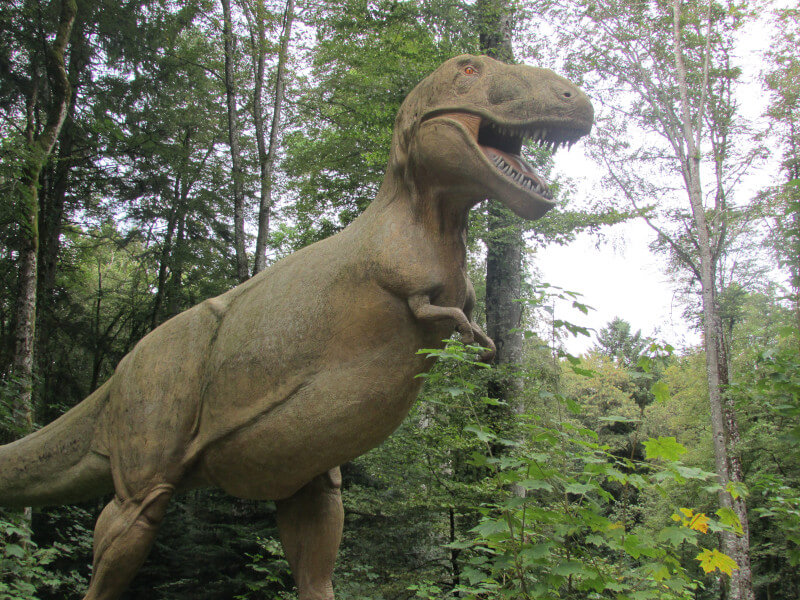 Un T-Rex du Préhisto Parc